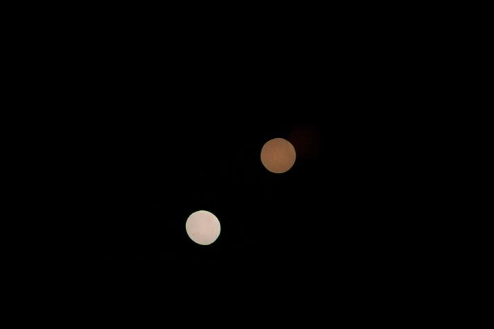 hanabi-DSC_0455